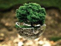 Föld napja - Zöld hónap a Pink Dust blogon